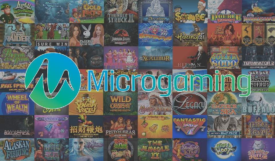 Microgaming software for online casino